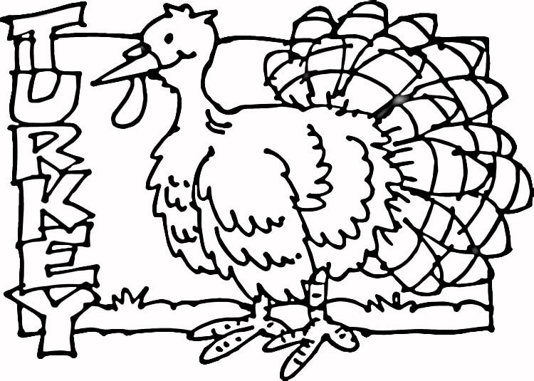Turkey-coloring-page