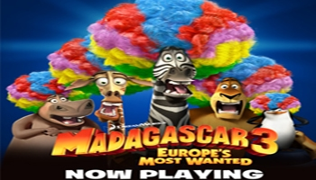 Madagascar Party