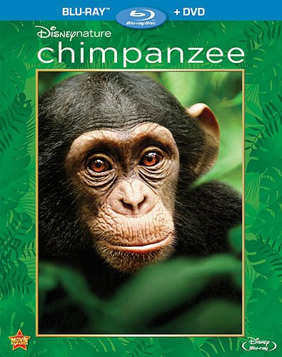 DisneyNature's CHIMPANZEE