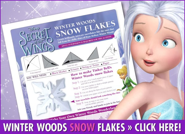 Winter Woods Snow Flake Activity From Secret of the Wings