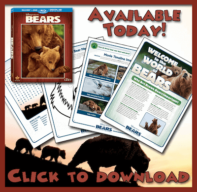 Disneynature-Bears-free-printable-activity-sheets