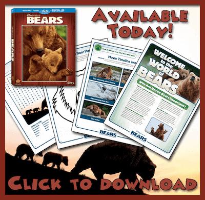 Disneynature-Bears-free-printable-activity-sheets