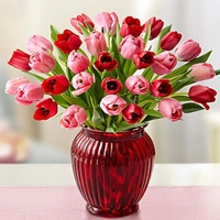 1800flowers.com sweetest love tulips