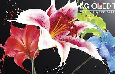 LG OLED now at Best Buy #HintingSeason #OLEDatBestBuy
