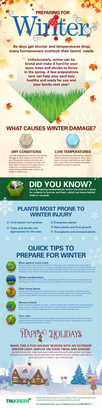 TruGreen Winter Lawn Care