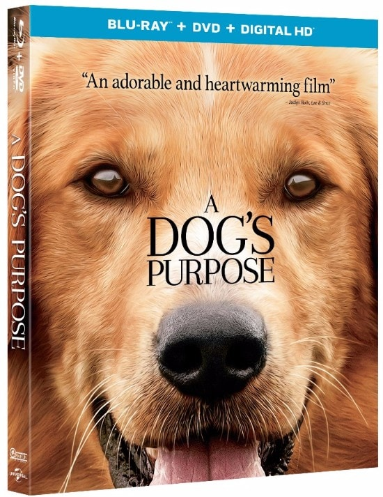 A Dog S Purpose Full Movie Links
