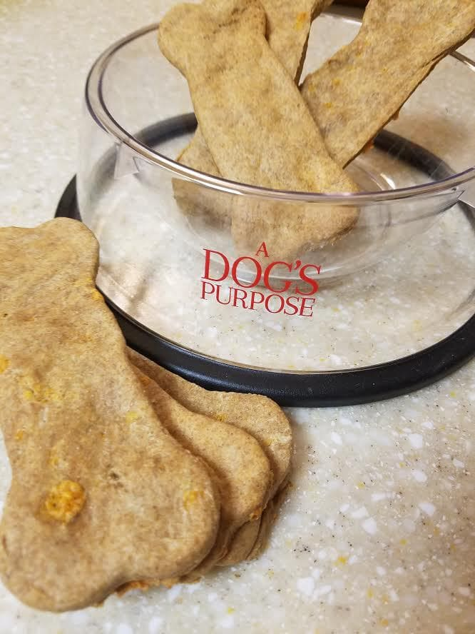Cheddar Homemade Dog Biscuits