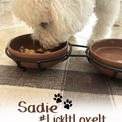 Hartz Delectables, the First Lickable Stew Treats for Dogs