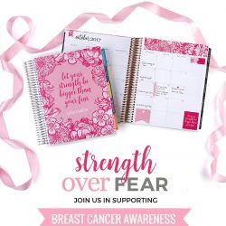 Erin Condren Strength Over Fear