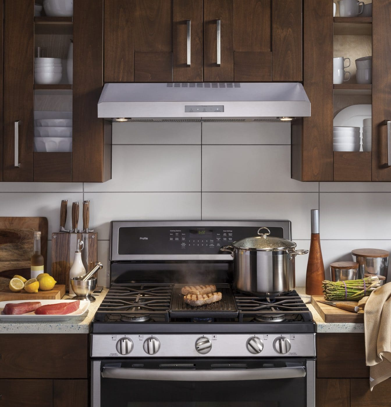 GE Profile Series Gas Range