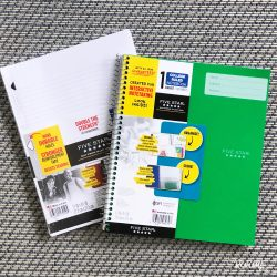 Five Star Interactive Notebook