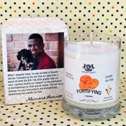 Aromatherapy Deodorizing Soy Candle for Pets: Fortifying Pumpkin