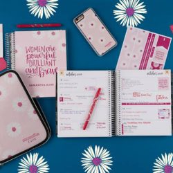 Erin Condren BCRF Collection