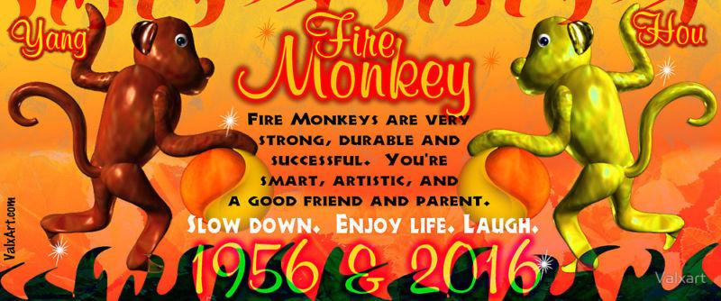 Fire Monkeys Description