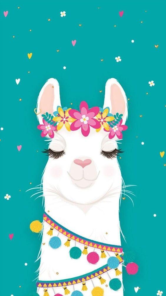 iPhone Wallpaper: llama teal background