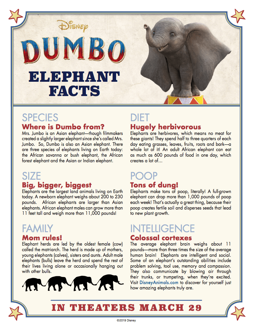 Dumbo: Elephant Facts