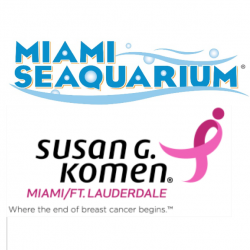 The Review Wire: Breast Cancer Awareness Guide: Miami Seaquarium kicks off 'Hopetober' to benefit Susan G. Komen
