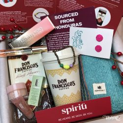 The Review Wire 2019 Holiday Gift Guide: Spiritu Fall Subscription Box
