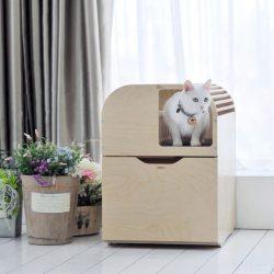 Camada Litterbox