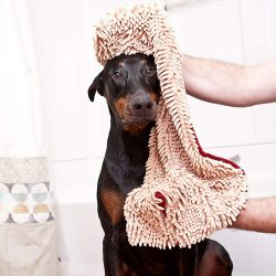 The Review Wire 2019 Holiday Gift Guide: Soggy Doggy Super Shammy Absorbent Towel
