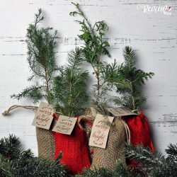 The Review Wire Holiday Gift Guide 2019 Little Saps Gift Trees