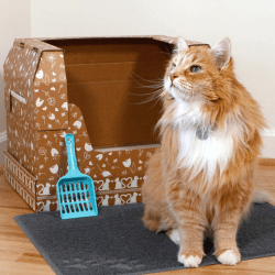 The Review Wire Holiday Gift Guide 2020: Kitty Poo Club