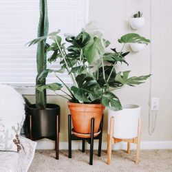 The Review Wire Holiday Gift Guide 2020: Mid-Century Adjustable Plant Stand from declutterd