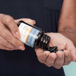 The Review Wire Holiday Gift Guide 2020: Papa & Barkley CBD Releaf Capsules