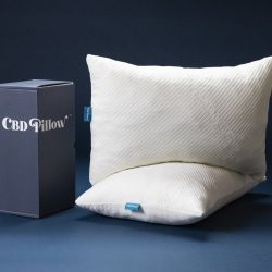 The Review Wire Holiday Gift Guide 2020: CBD Pillow
