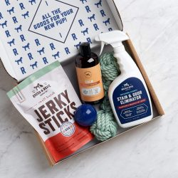 The Review Wire Holiday Gift Guide 2020: Rocco & Roxie Welcome Home Ultimate Dog Box