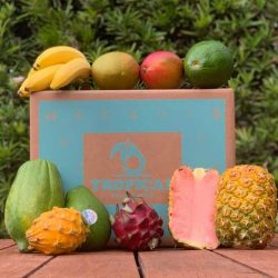 The Review Wire Holiday Gift Guide 2020: Taste the Tropics Fruit Box