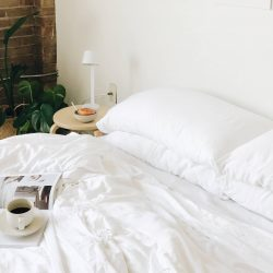 The Review Wire Back to School Guide: Cozy Earth Pillow Cases
