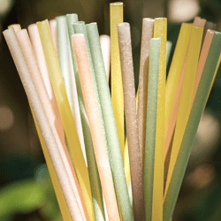 The Review Wire Summer Guide: EQUO Biodegradable Straws