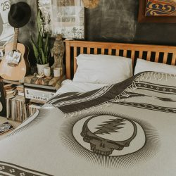 The Review Wire Back to School Guide: Fillmore Throw Blanket
