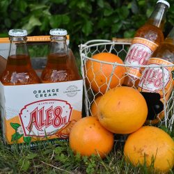 The Review Wire Summer Guide: Orange Cream Ale-8-One