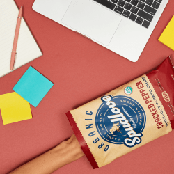 The Review Wire Back to School Guide: SpudLove Organic Thick-Cut Potato Chips