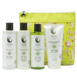 The Review Wire Summer Beauty Guide: Tropical Escapes Key Lime Essentials
