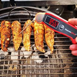 ThermoPro TP19 Thermometer